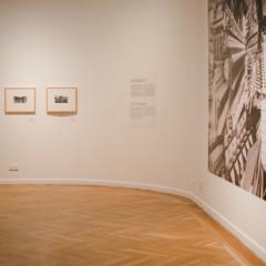 Foto 4 de 16 de la galería circulo-de-bellas-artes-y-phe en Xataka Foto