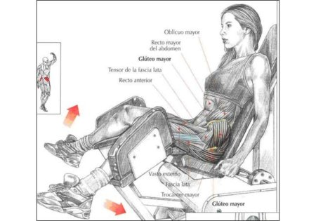 ejercicios para fortalecer la parte externa del muslo