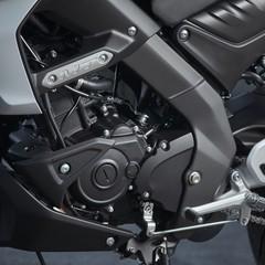 Foto 15 de 34 de la galería yamaha-mt-125-2020-prueba en Motorpasion Moto