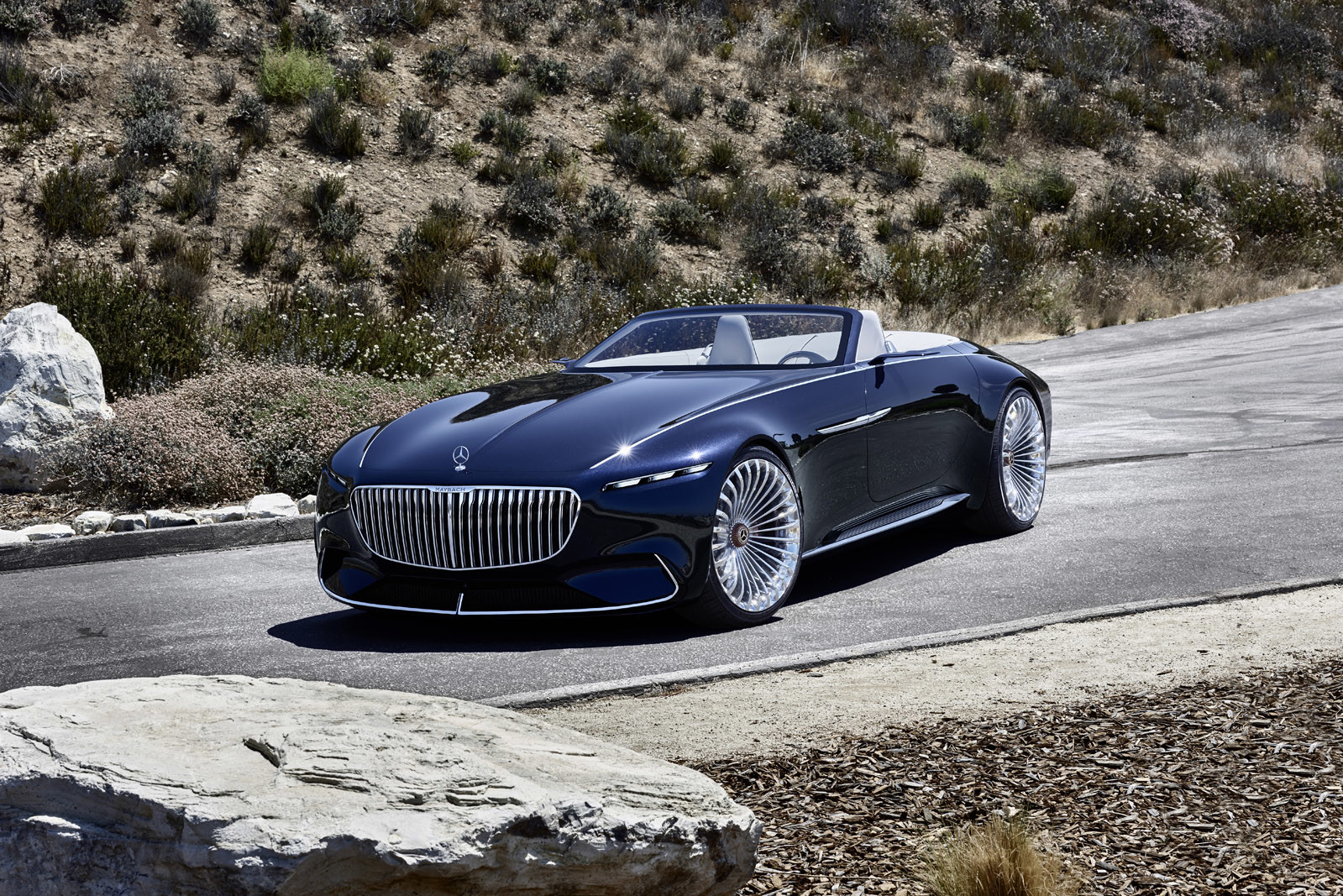 Foto de Vision Mercedes-Maybach 6 Cabriolet (6/12)