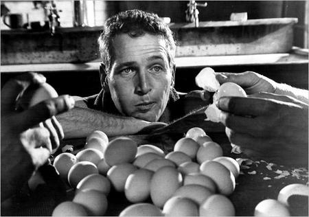 Oscars Paul Newman Como Cool Hand Luke