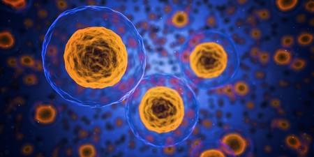 Enfermar De Cancer En Eeuu Deja Heridos De Muerte Los Ahorros De Toda Una Vida 5