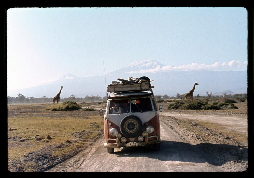 Foto de 60 años del Volkswagen Bully (11/34)