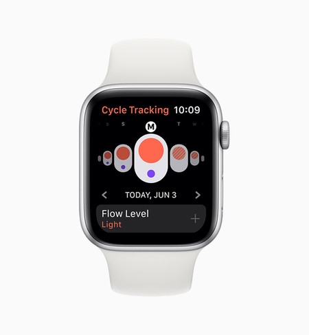 Apple Watchos6