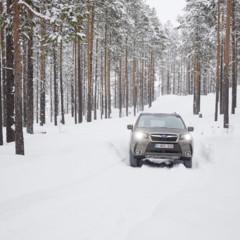 Foto 2 de 137 de la galería subaru-snow-drive-2016 en Motorpasión