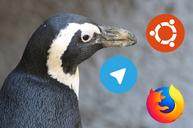 Ubuntu, Firefox, Telegram y el resto de programas y distros más populares entre los usuarios de Linux