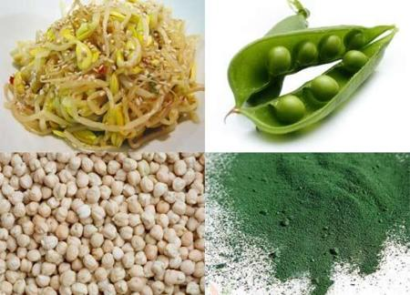 Adivina adivinanza: ¿cuál es el vegetal que contiene más proteínas?