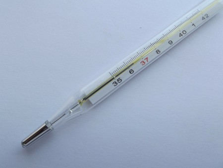 Thermometer 106380 1920