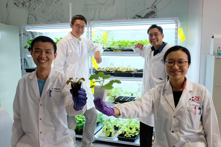 Mediante señales eléctricas, este dispositivo puede comunicarse con plantas
