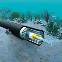 """Brasil desplegará su propio cable submarino de Internet para evitar """"pinchazos"""" de la NSA"""