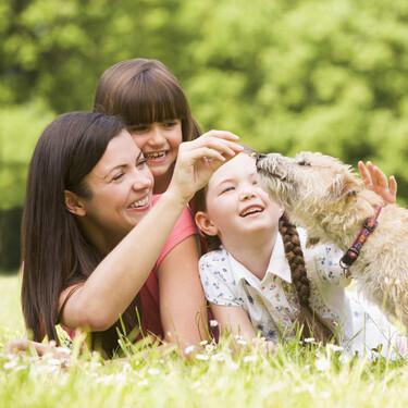 """""""Mamá, ¿podemos tener un perrito o un gatito?"""": ventajas e inconvenientes de tener animales en casa, según mi experiencia"""