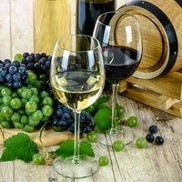 Buenas noticias para el vino mexicano: se ha aprobado la Ley de Fomento a la Industria Vitivinícola Nacional