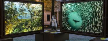 """Llega a las calles la exposición de National Geographic """"De Polo a Polo"""""""