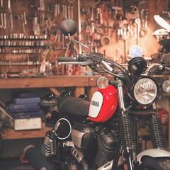Foto 20 de 28 de la galería yamaha-scr950-2017-2 en Motorpasion Moto