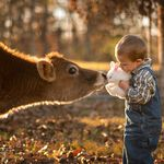 Así crecen en una granja: un padre toma preciosas fotografías de sus hijos conviviendo con animales