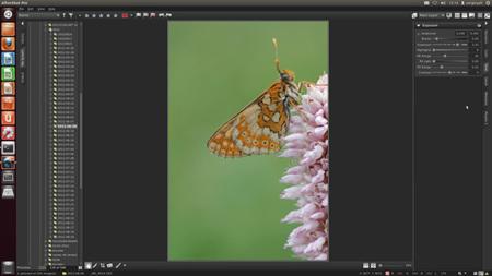 AfterShot Pro, análisis en detalle del procesador RAW de Corel