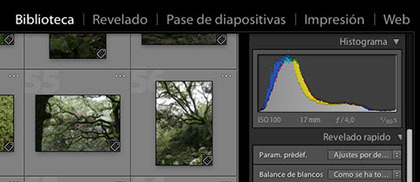 Traduce Lightroom al Español