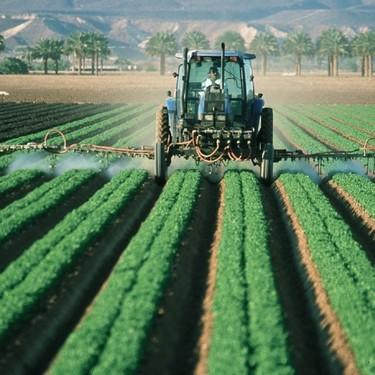 El pesticida alimenticio que quieren prohibir en 2020, ¿es tan peligroso como dicen?