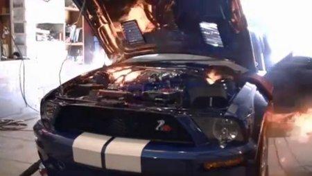 Dolorpasión™: La avaricia rompe el saco (Mustang GT500)