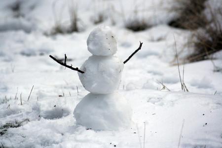 Proteger Equipo Frio Nieve 6