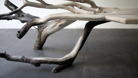 Fallentreeweb