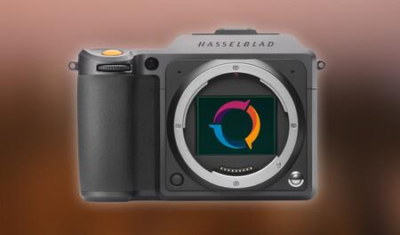 Estos son los diez mejores sensores fotográficos del mercado (Sony domina y no hay ni uno de Canon) según DxOMark