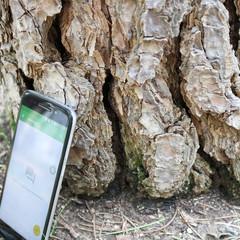 Foto 23 de 30 de la galería diseno-del-alcatel-idol-5 en Xataka Android