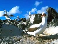 Una nueva tasa para visitar las Islas Galápagos
