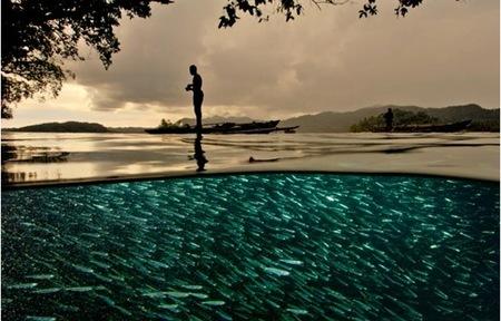 national-geographic-20-best-photos18.jpg
