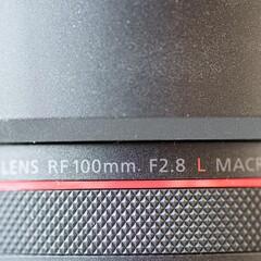 Foto 22 de 27 de la galería canon-rf-100-mm-f-2-8-l-macro-is-usm en Xataka Foto