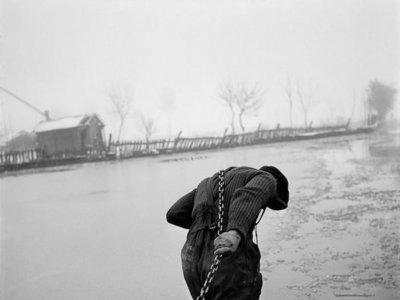 Werner Bischof, el fotógrafo artista que brilló en el fotoperiodismo