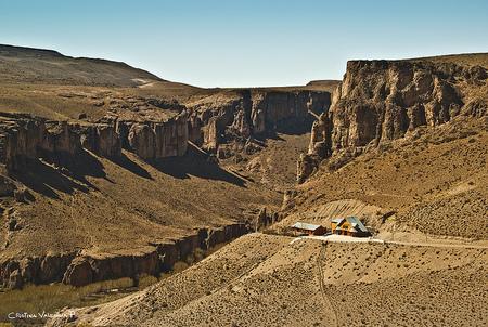 Patagonia: destino para turismo paleontológico