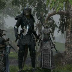 Foto 2 de 14 de la galería the-elder-scrolls-online-22-10-2012 en Vida Extra