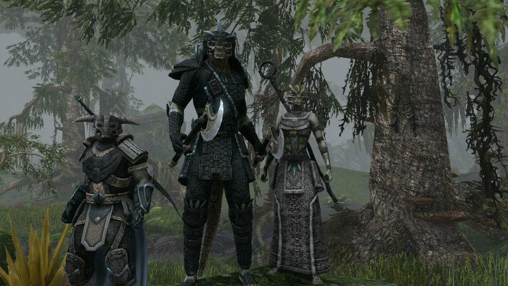 Foto de The Elder Scrolls Online - 22/10/2012 (2/14)