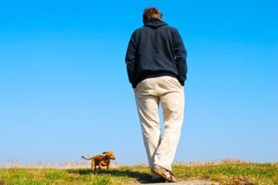 Hacer ejercicio con tu mascota