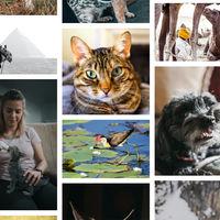 Unsplash libera más de dos millones de imágenes bajo una licencia no comercial para el entrenamiento de redes neuronales