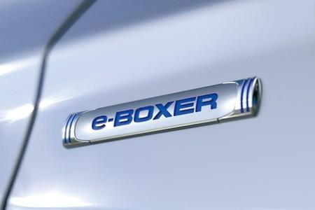 Subaru E Boxer 33