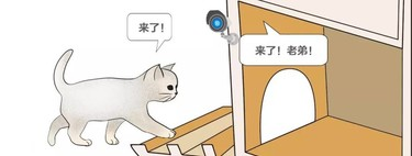 Baidu diseña refugios invernales para gatos con sistema de reconocimiento facial (para no dejar entrar a los perros)