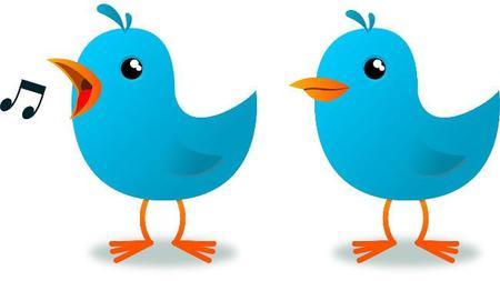 Twitter Cards, la mejor forma de sacar todo el partido a Twitter en tu web de empresa
