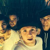 Que se pare el mundo que se van a separar 'One Direction'...  pero volverán