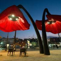 Las farolas en forma de amapolas gigantes de una plaza en Jerusalén