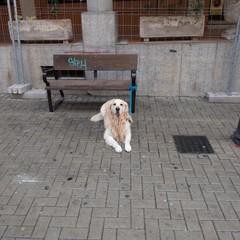 Foto 2 de 18 de la galería sony-rx0 en Xataka Foto