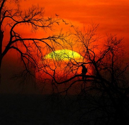 Puestas de sol para inspirarte 10