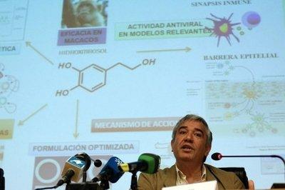 Un compuesto que se extrae del olivo podría actuar contra el virus del sida