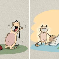 Foto 4 de 6 de la galería gatos-vs-perros en Trendencias Lifestyle