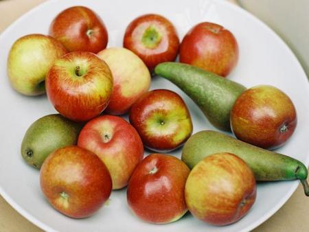 Alimentación saludable: calorías negativas, un tema controvertido