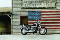 Harley-Davidson Low Rider. Vuelve un icono