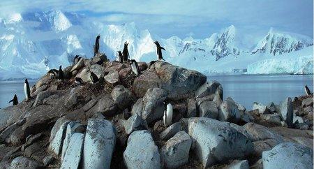 Chile planea construir un museo en la Antártida