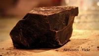 Chocolate probiótico
