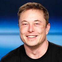No es bitcoin, es Tesla: las acciones suben tanto que ni los analistas se aclaran a la hora de llamarlo una burbuja